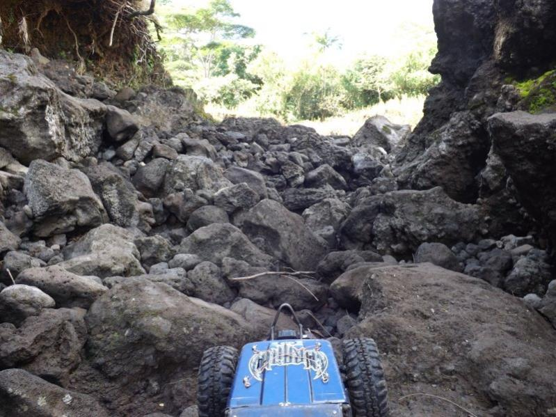 Name:  Waiakea Stream 001.jpg